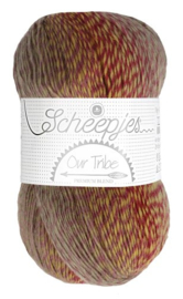 Scheepjes Our Tribe 961 Fifty shades of 4ply