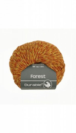 durable-forest-4018