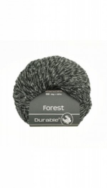 durable-forest-4013