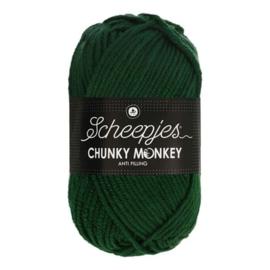 Scheepjes Chunkey Monkey 1009 Pine