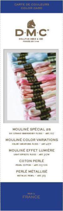 DMC Kleurkaart mouline W100B