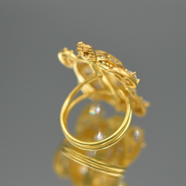 Ring turtle clear