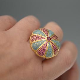 Ring sea urchin combi