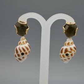 Labradoriet en shell