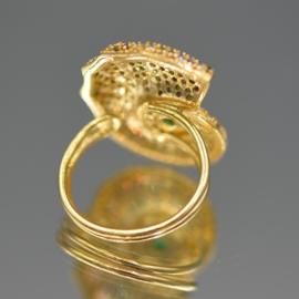 Ring paved nautilus