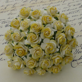 2-Tone Yellow Open Roses - 15 mm