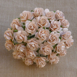 Pale Peach Open Roses - 10 mm