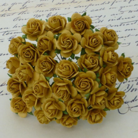 Old Gold Open Roses - 15 mm