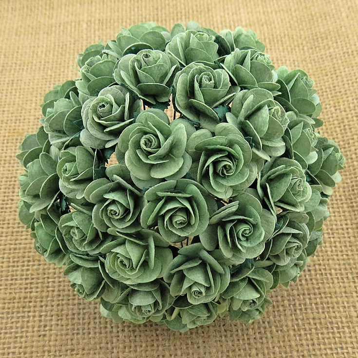 Mint Green Open Roses - 10 mm