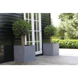 Vierkante plantenbak `Michigan`. L60 x B60 x D60 cm Kleur: Grey Stonelook