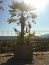 Steigerhouten plantenbak ongeschaafd 80x80x60 cm incl. verzonken zwenkwielen