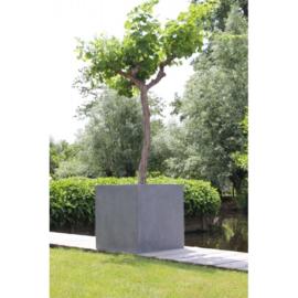 Vierkante plantenbak `Michigan`. L80 x B80 x D60 cm Kleur: Grey Stonelook
