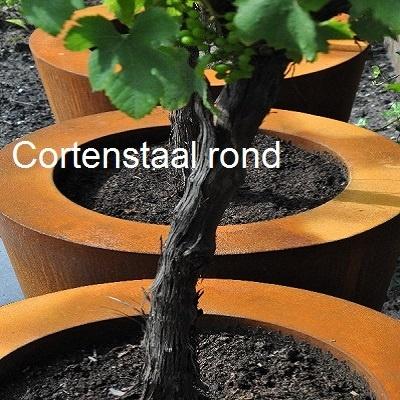 1Cortenstaal plantenbak rond.jpg