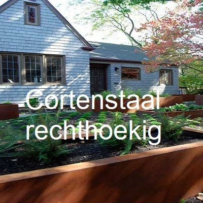 Corten staal plantenbak rechthoekig 1.jpg