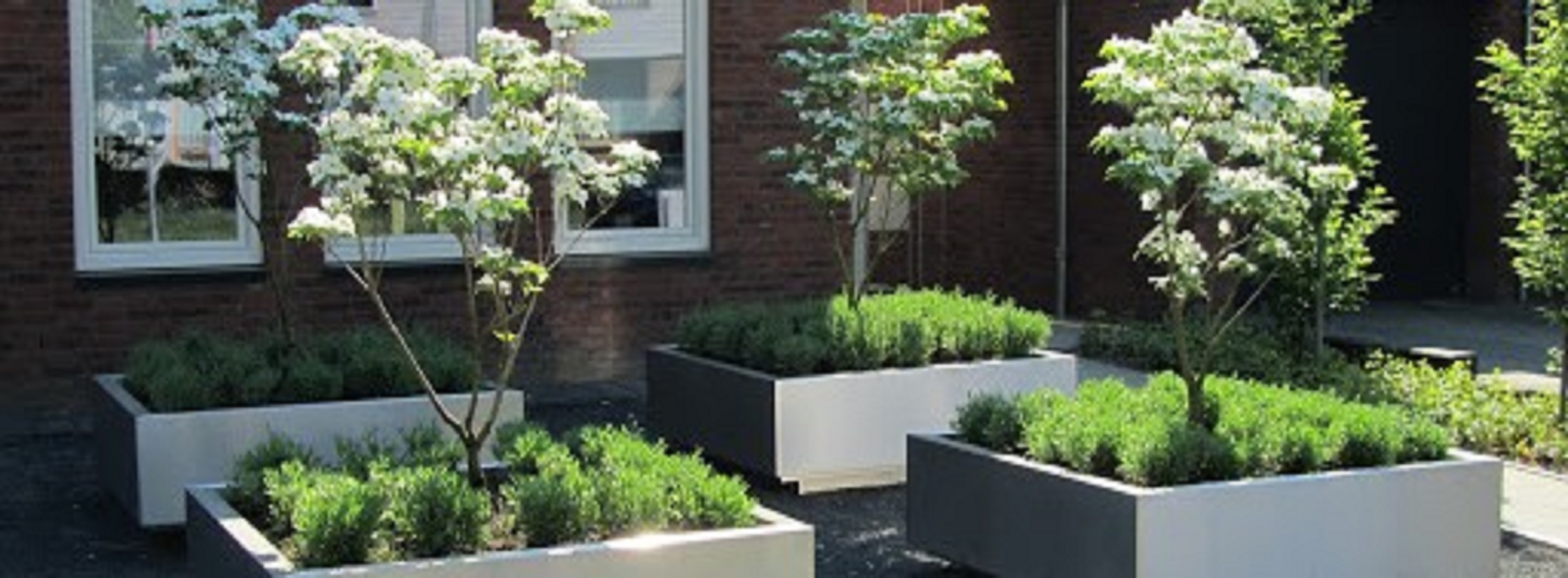 RVS plantenbakken sfeer