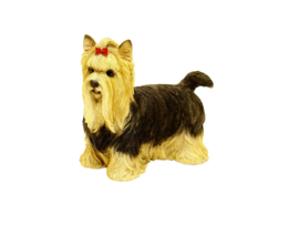 Yorkshire Terrier - Tuinbeeld - Polystone