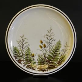 Dinerbord - Ø 25 cm - Winterling Röslau Bavaria - Wilde planten