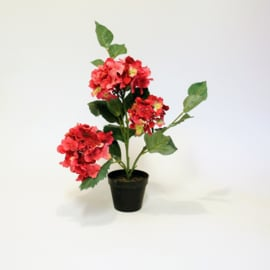 Kunstplant Hortensia