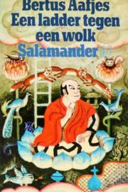 Sal468/1 -  Bertus Aafjes - Een ladder tegen een wolk