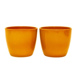 Bloempot - Binnen - Oranje - Set van 2 Stuks