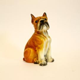 Beeld van een Boxer - Hond