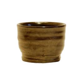 Bloempot / Cactus pot