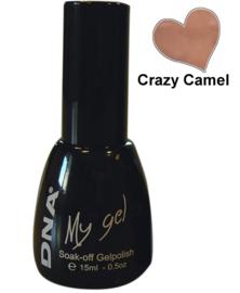 CRAZY CAMEL