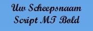Borduurwerk in MS Script Bold