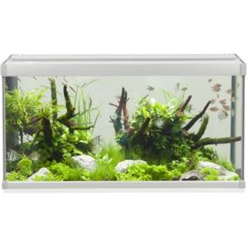 Aquarium type FAMILY