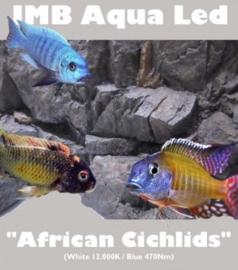 """JMB Aqua Led - """"AFRICAN CICHLIDS"""""""
