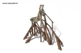 Mangrove Wortels D