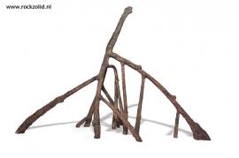 Mangrove Wortels C
