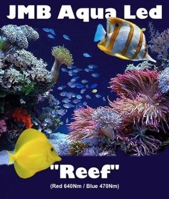 "JMB Aqua Led - Wieren Filter - ""REEF"" - R/B - in 1W & 3W High Power"