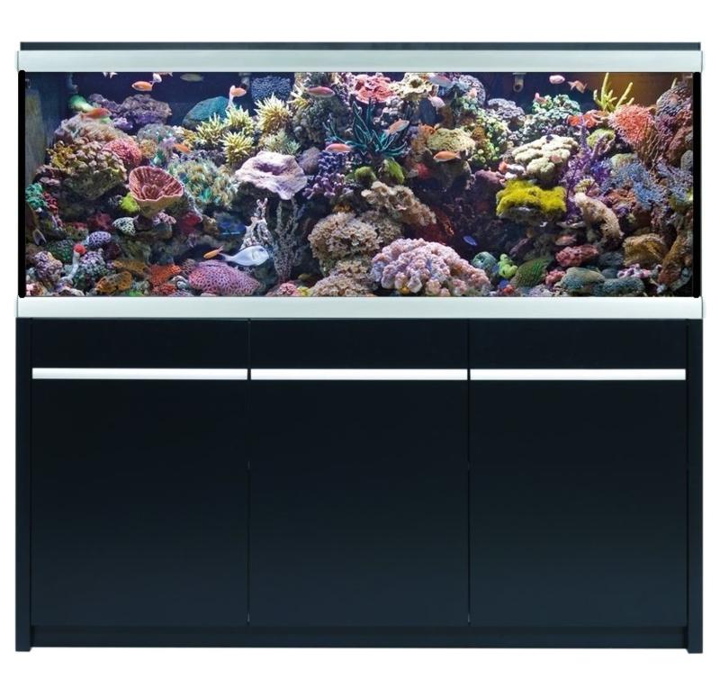 Aquarium type MOVE