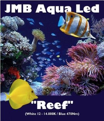 """JMB Aqua Led - """"REEF"""""""