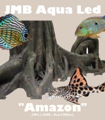 """JMB Aqua Led - """"AMAZON"""""""