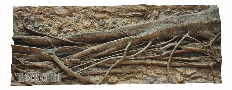 River Side Mangrove Roots (198 x 78CM)