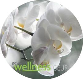 orchidee verstuifmix