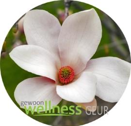 Magnolia verstuifolie