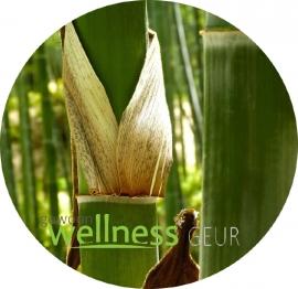 Bamboo verstuifolie