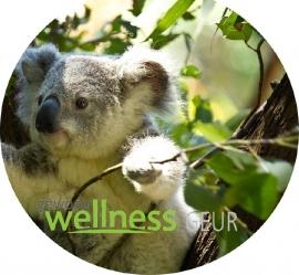 Eucalyptus/Rozemarijn verstuifolie 100% PUUR EM