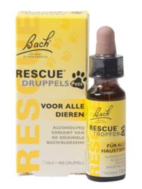 Bach Rescue Pets