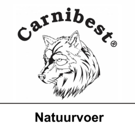 CARNIBEST - KAT | Natuurvoer | 500 gram