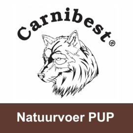 CARNIBEST | Natuurvoer Puppy | 500 gram