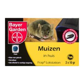Bayer Muizen in huis Frap Lokstation 2 x 10 gram.