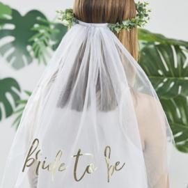 Eucalyptus bride to be - haarband