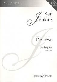 Pie Jesu from Requiem - Karl Jenkins