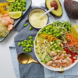 Take-a Bowl tonijn/gamba