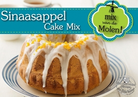 Sinaasappel Cake mix 425 gram
