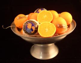Sinaasappelen Navel Lane Late | voor de hand | teelt: regulier - Spanje | groot formaat 5 stuks